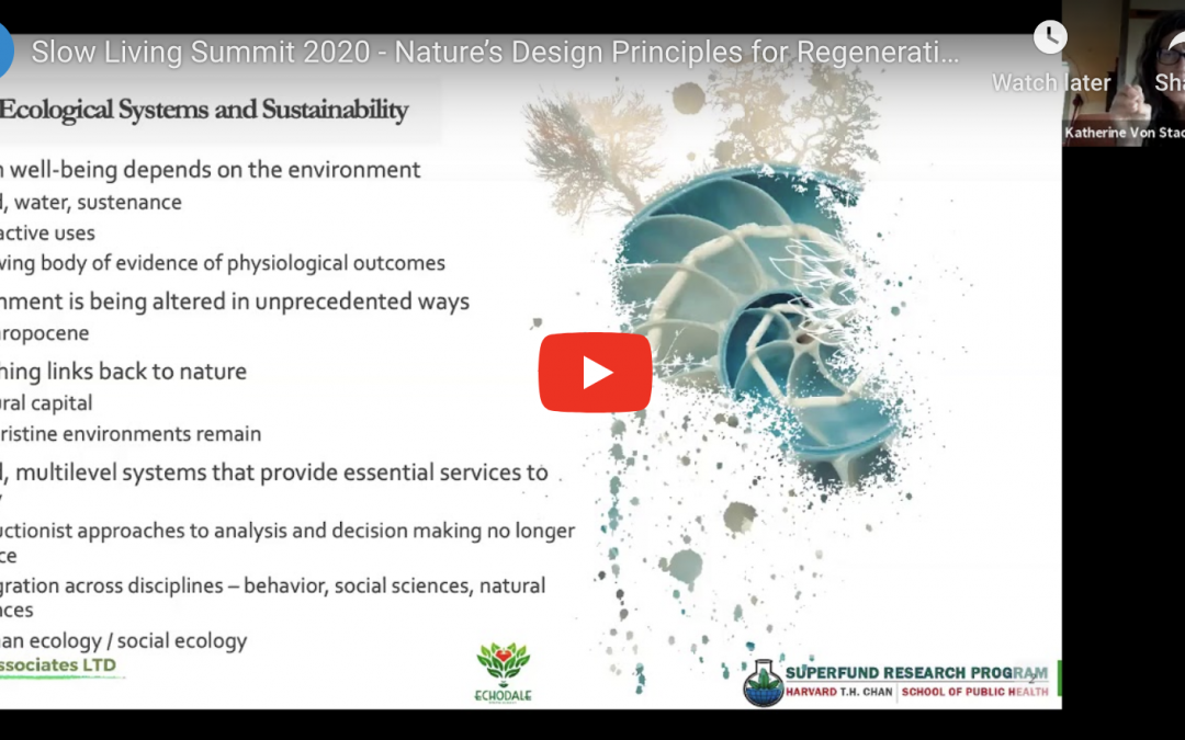Nature's Design Principles for Regenerative Systems – Slow Living Summit 2020